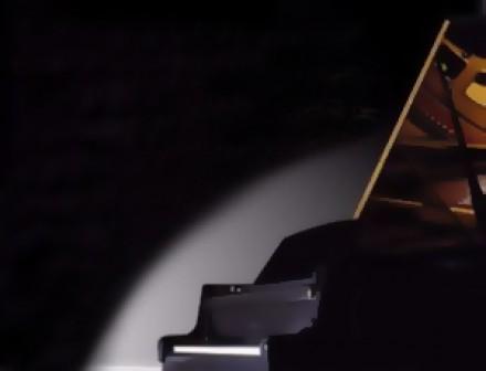 Чехол для рояля Petrof VI: фото